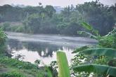 10 năm bị tra tấn bởi mùi hôi thối của sông Bắc Hưng Hải