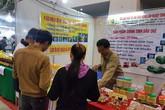 Hải Phòng khai mạc hội chợ triển lãm Công thương đồng bằng sông Hồng 2017