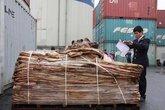 Kiểm tra container chở da ngựa muối, phát hiện lô cá ngựa nhập lậu