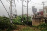 Hái rau cạnh trạm điện 220 KV, người đàn ông bị điện giật chết