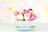 Các kiểu cắm hoa tươi ấn tượng cho nhà luôn rực rỡ dịp năm mới