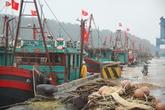 Nghệ An: Cấm tàu thuyền ra khơi, chủ động ứng phó với cơn bão số 3