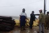 Thanh Hóa chủ động đối phó với bão số 2