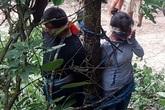 Một phụ nữ bị trói cho kiến độc cắn đến chết ở Bolivia