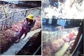 Phát hiện người đàn ông khả nghi đi theo bé gái Việt bị sát hại ở Nhật