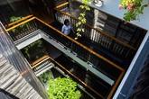 Nhà ống 4 tầng đẹp như resort hạng sang nhờ cây xanh mọc khắp nhà