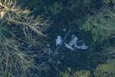 Anh: Hai máy bay va chạm trên không gây nhiều thương vong