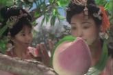 Cười té ghế khi biết về loại quả ăn vào trường sinh bất lão trong Tây du ký