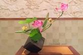 Bày cách căm bình hoa đẹp cho mùa sen tháng 5