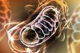 1 triệu chứng cảnh báo ung thư phổi: Phát hiện sớm 90% cơ hội chữa khỏi bệnh