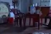 Nữ chủ quán ăn bị chém tử vong ngay tại quán sau màn cãi vã