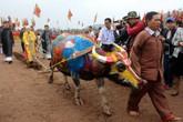 Toàn cảnh Lễ hội Tịch điền Đọi Sơn năm 2017