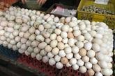 Sau thịt lợn, đến lượt giá trứng gia cầm giảm kỷ lục
