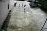 Hải Phòng: Nữ công nhân tử vong do xe đâm khi đang đi bộ