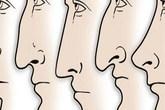 Tự xem số phận theo nhân tướng học: Mũi và cung tài lộc, cung bệnh, cung phu thê