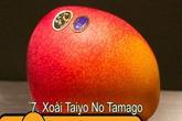 10 loại trái cây đắt đỏ nhất thế giới