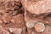 Đào đất xây dựng, phát hiện hàng loạt trứng khủng long 145 triệu năm