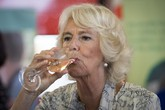 Bà Camilla gây choáng khi nhận lời tiệc tùng, bỏ qua đám cưới cháu gái Nữ hoàng Anh, bắt nguồn từ mối hận 'truyền kiếp'