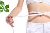 Mách chị em cách giảm cân hiệu quả bất ngờ từ thảo dược thiên nhiên