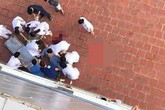 Hà Nội: Một bệnh nhân lao từ tầng 6 bệnh viện xuống đất tử vong