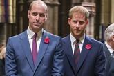 Harry cãi nhau với William vì anh trai 'không nhiệt tình chào đón Meghan'