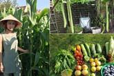 Bà mẹ Việt ở Đức bận con mọn vẫn quyết tự cuốc đất, đào gạch để trồng rau sạch