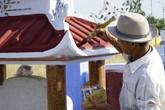 Cạo rêu lăng mộ kiếm chục triệu mỗi tháng