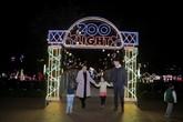 Háo hức đón chờ ngày khai mạc xứ sở ánh sáng Holiday Lights vào cửa miễn phí