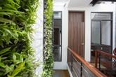 Hai khu vườn thẳng đứng chia ba ngôi nhà ống Đà Nẵng