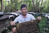 """Cụ ông """"bỏ túi"""" 300 triệu/năm nhờ nuôi 250 đàn ong"""