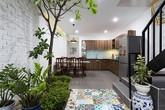 Căn nhà 4 tầng khiến ai cũng thích vì cây xanh mọc tràn lan trong nhà