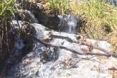 Tin mới nhất về không khí lạnh: Mẫu Sơn mưa tuyết, nước suối đóng thành băng ở Sapa