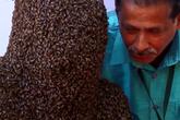 Chàng trai Ấn Độ để 60.000 con ong bu mặt