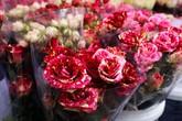 """Hoa tươi giá đắt """"kỷ lục"""" vẫn cháy hàng ngày Valentine"""