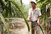 Cụ ông kiếm hàng trăm triệu nhờ biến sỏi đá thành vườn cây đặc sản