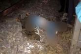 Hải Dương: Để lại mảnh giấy, một phụ nữ lao vào tàu hỏa tự tử