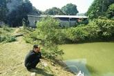 Ba cháu bé chết đuối dưới ao nước sau nhà: Xóm nghèo nhuốm màu tang thương