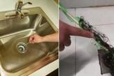 Chỉ dùng 1 chai nhựa, vừa gỡ sạch tóc trong cống, vừa thông tắc bồn rửa nhanh bất ngờ
