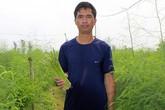 Thầy giáo xứ Nghệ kiếm hơn 600 triệu đồng/năm nhờ trồng măng tây