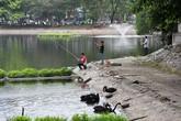 Hà Nội: Thản nhiên câu cá gần đàn thiên nga ở hồ Thiền Quang