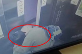 """Vào thang máy một mình, bé gái hoảng hốt khi bị cụ ông 65 tuổi """"cưỡng hôn"""""""