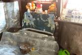 Hàng trăm người ùn ùn kéo đến thắp nhang cho cái lò dính chặt vào nền nhà bếp