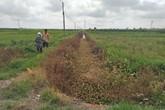 Huyện Hoằng Hóa (Thanh Hoá): Dân bức xúc vì doanh nghiệp gây ô nhiễm môi trường