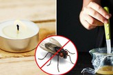 """Cách đuổi ruồi """"sạch bay"""" cả đàn trong nhà chỉ cần một cây nến, hiệu quả không ngờ"""