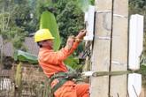 EVNNPC đảm bảo cấp điện an toàn, ổn định