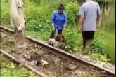 Hãi hùng người đàn ông bị đứt lìa đầu sau cú va chạm với tàu hỏa