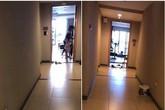 Hình ảnh người dân trong chung cư đem nồi cơm điện ra hành lang cắm gây tranh cãi