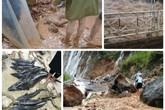 Những hình ảnh thắt lòng sau trận lũ quét ở miền Bắc khiến 19 người chết và mất tích