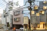 """Làm nhà giống một cái cây, kiến trúc sư tạo ra """"thành quả"""" khiến ai cũng bất ngờ"""