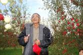Vườn táo đẹp như cổ tích của cụ ông dành tâm huyết suốt 11 năm chăm sóc